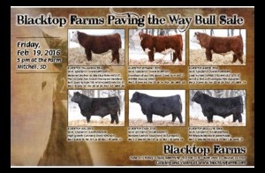 Black Top Farms Feb 2016 Sale PDF